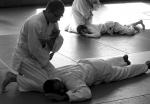 aikido-martial arts